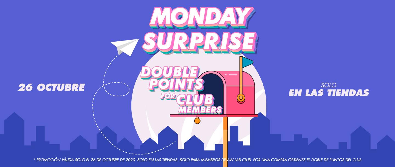 surprise monday aw lab